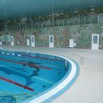 Бассейн 50 метров